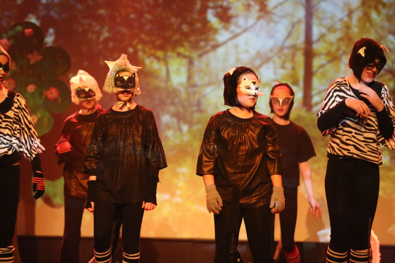 Puss in Boots - December 2014   Abbey Arts Centre